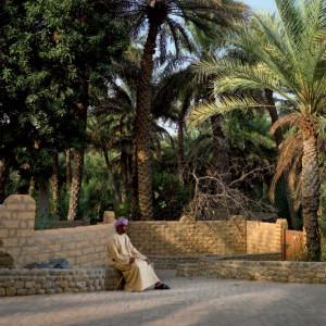 Abu Dhabi Al Ain Oase